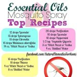 essential oils for insect repellents