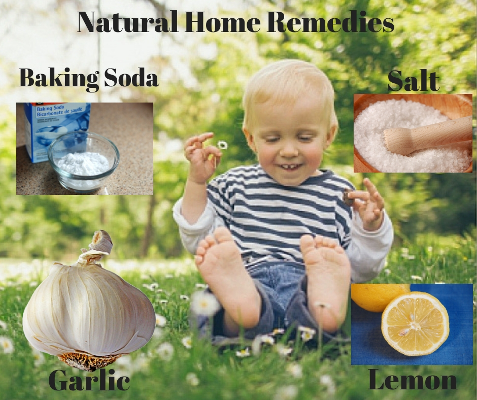 Natural Home Remedies For Treating Mosquito Bites On Babies Safe O Kid